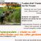 Teutoburger Wald auf abwechslungsreichen Rundwandertouren entdecken